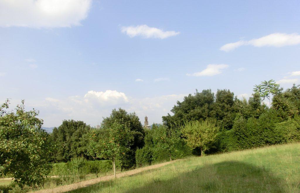 フィレンツェのボーボリ庭園の風景