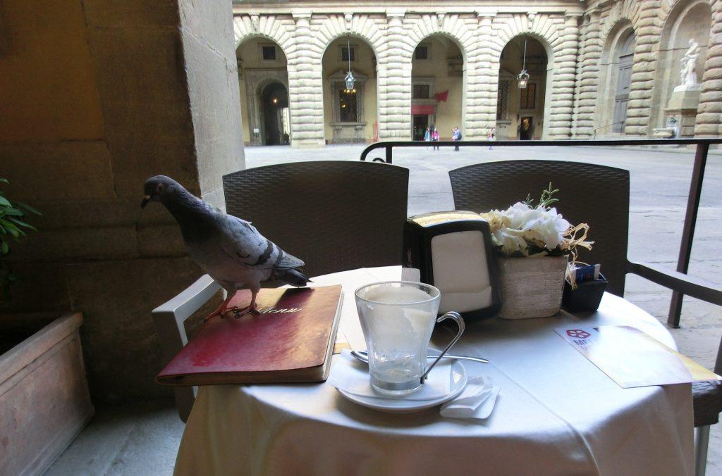 フィレンツェのボーボリ庭園のおしゃれカフェに鳩登場