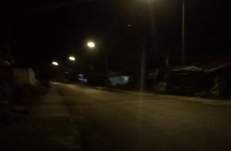 バンビエンの夜の道には犬がいっぱい