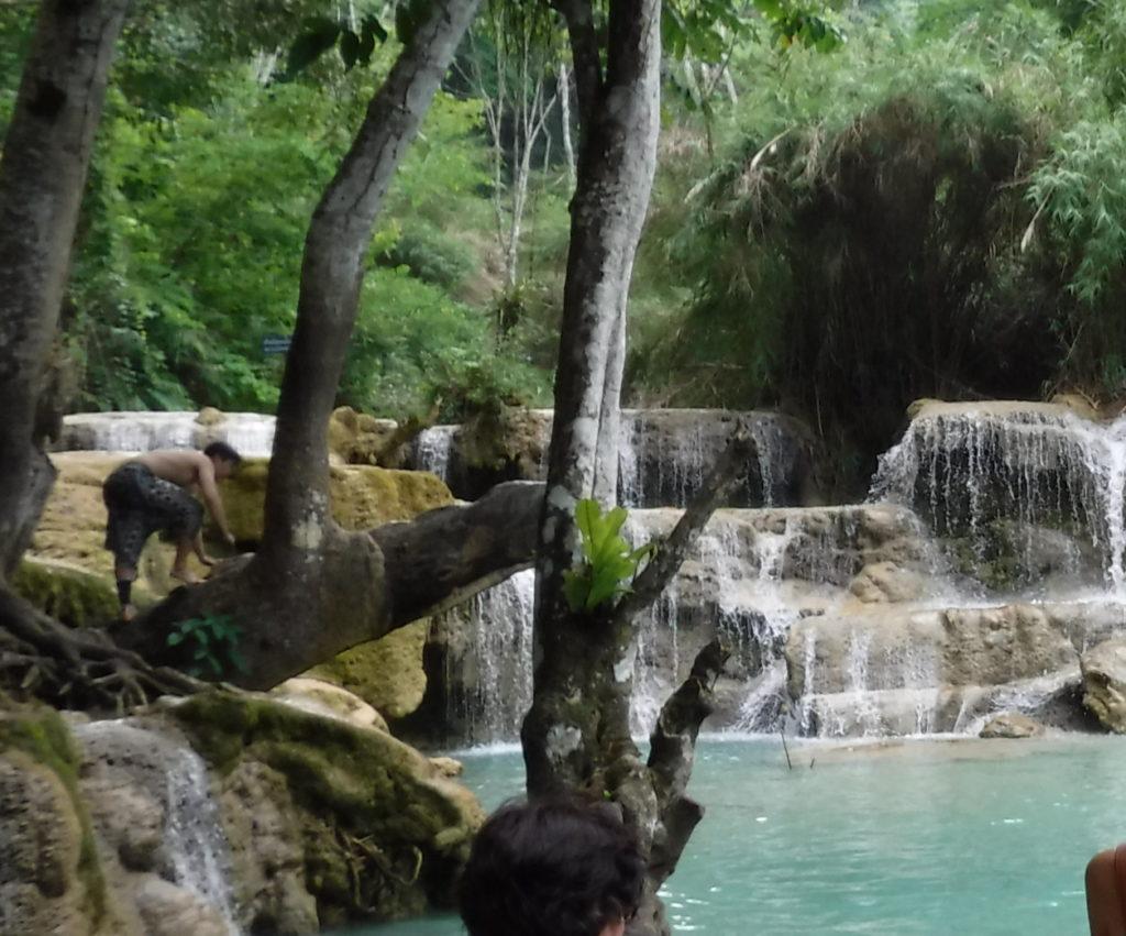 ラオス・ルアンパバーン「クアンシーの滝」は飛び込みできる