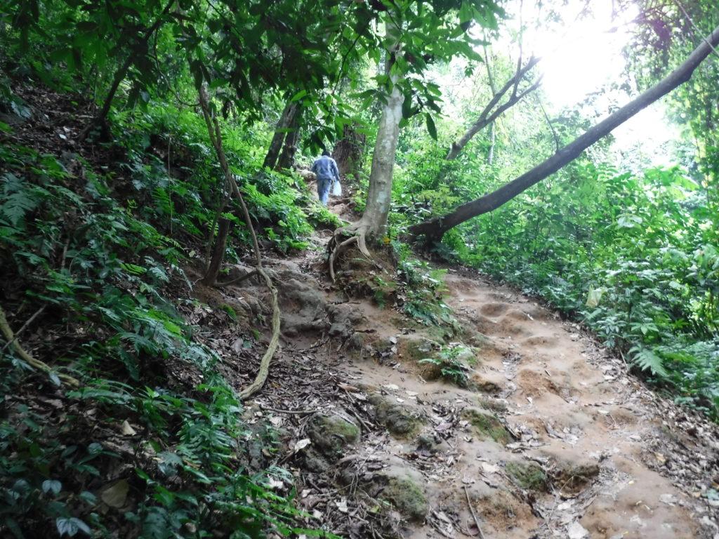 ラオス・ルアンパバーン「クアンシーの滝」トレッキングコース