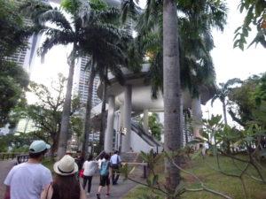 シンガポールのガーデンズバイザベイの中を散策