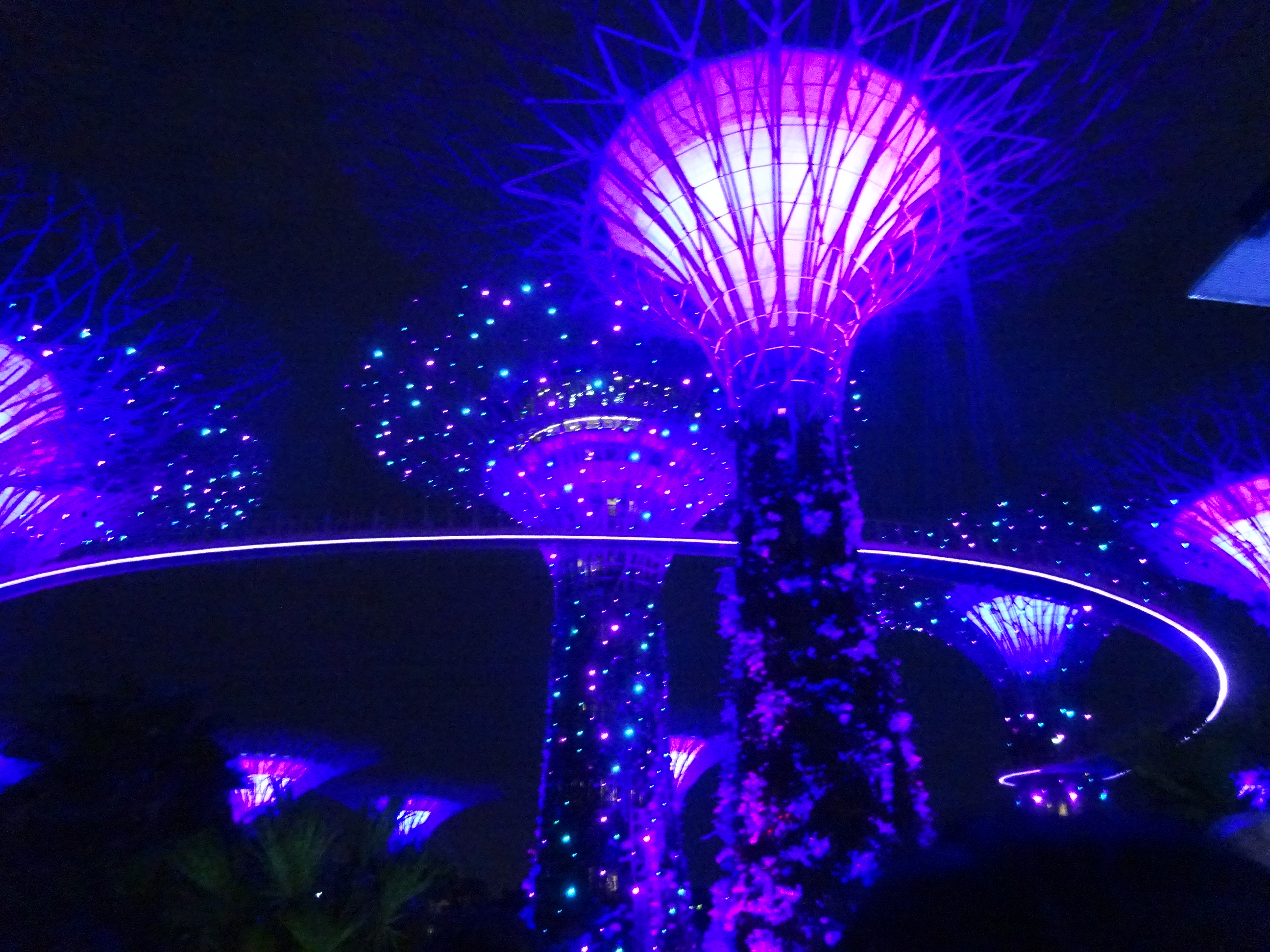 シンガポールのガーデンズバイザベイの夜のショー