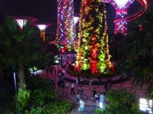 シンガポールのガーデンズバイザベイのショーの様子