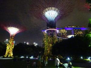 ガーデンズバイザベイの夜のショーはシンガポール観光でおすすめ