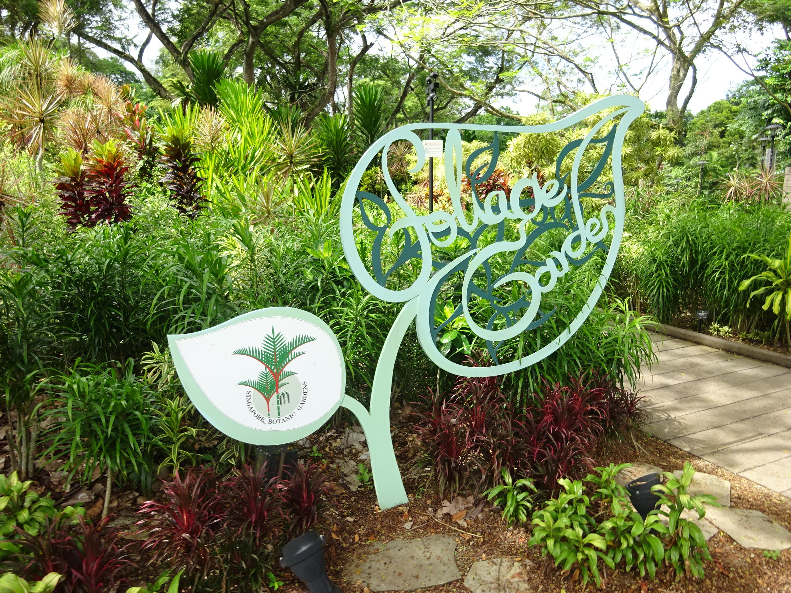 シンガポール植物園(ボタニック ガーデンズ)の中の風景
