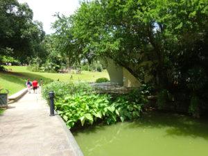 シンガポール植物園(ボタニック ガーデンズ)の敷地内